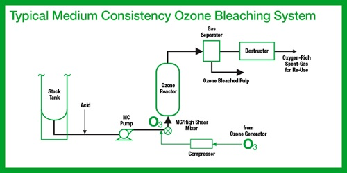 bleaching process diagram