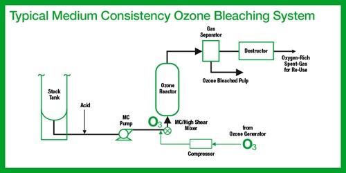 bleaching process diagram