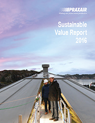 2016 Sustainable Value Report thumbnail