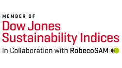 Dow Jones Sustainability World and North America Indices Logo