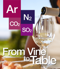 From Vine to Table