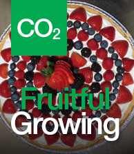 CO2 Fruitful Growing image