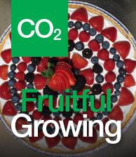 CO2 Fruitful Growing image