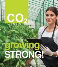 CO2 Growing Strong