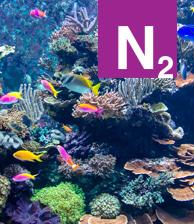 N2 Aquarium Glass